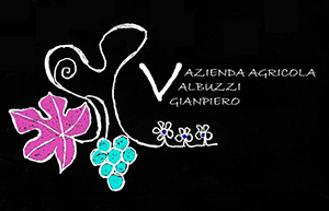 logo_valbuzzi_black